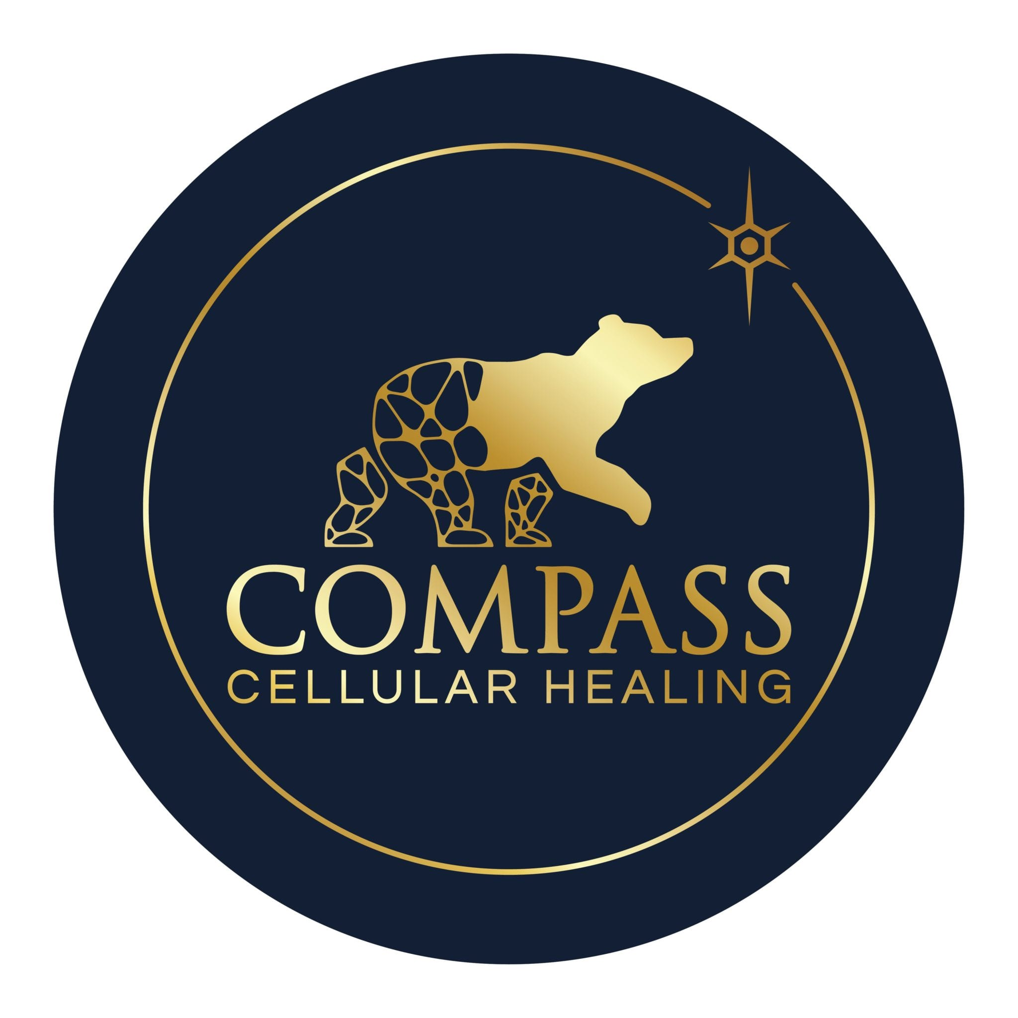 Compass Gold Circular on Navy